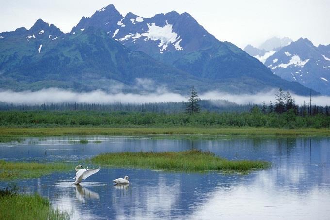 Vé máy bay đi Alaska từ Hà Nội