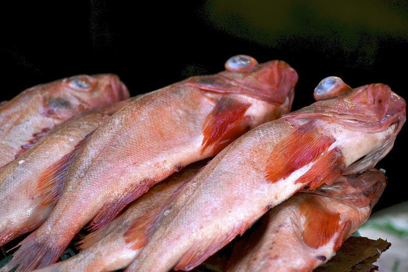 Tham quan chợ cá xứ Hàn