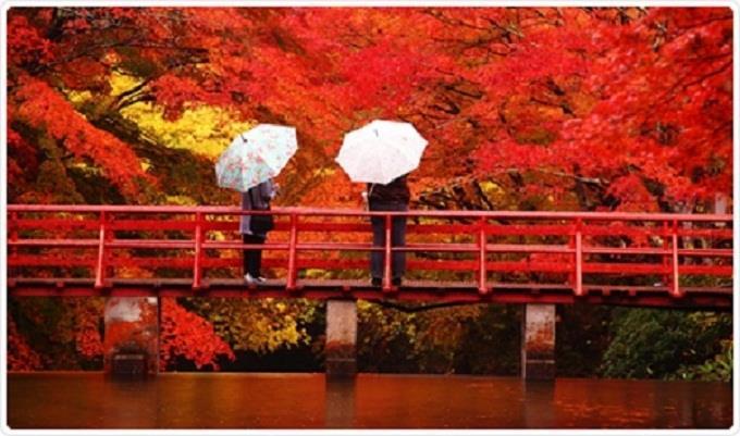 Khuyến mãi giá sốc đi Nhật Bản