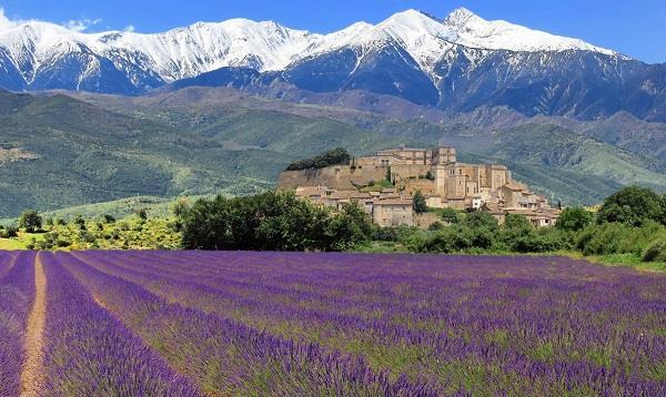Provence - vùng đất thơ mộng tuyệt đẹp của Pháp
