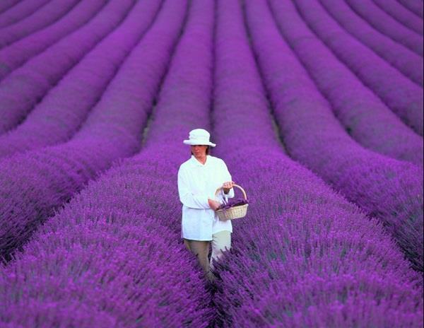 Những kỳ quan thiên nhiên tuyệt đẹp của Pháp