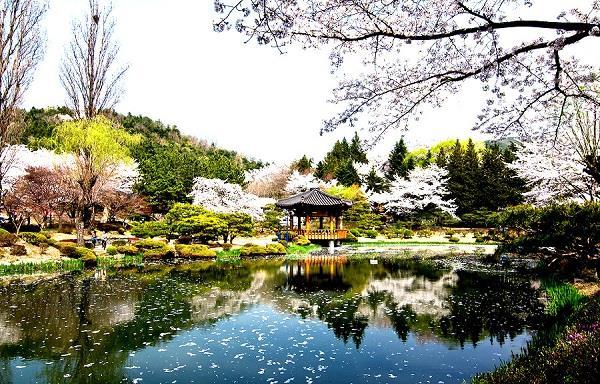 Những điểm du lịch nổi tiếng của Hàn Quốc
