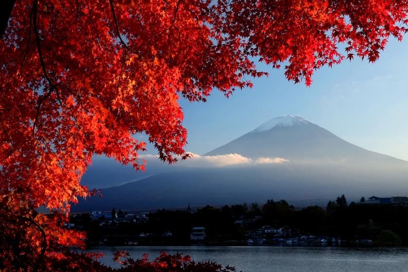Những điểm ngắm mùa thu tuyệt nhất Tokyo