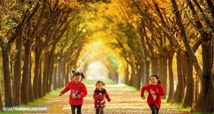 Mùa thu sang ngắm cảnh đẹp tại các địa điểm nổi tiếng Trung Quốc