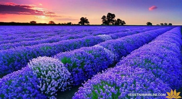 Chiêm ngưỡng những kỳ quan thiên nhiên tuyệt đẹp của nước Pháp