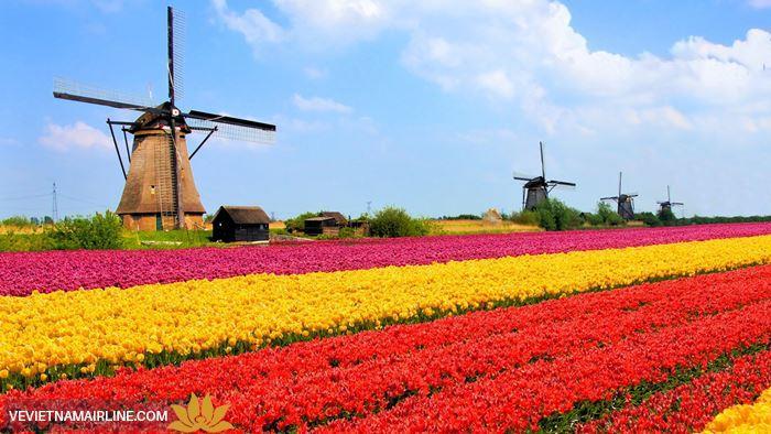 Trải nghiệm Hà Lan rực rỡ sắc màu qua những lễ hội đặc sắc